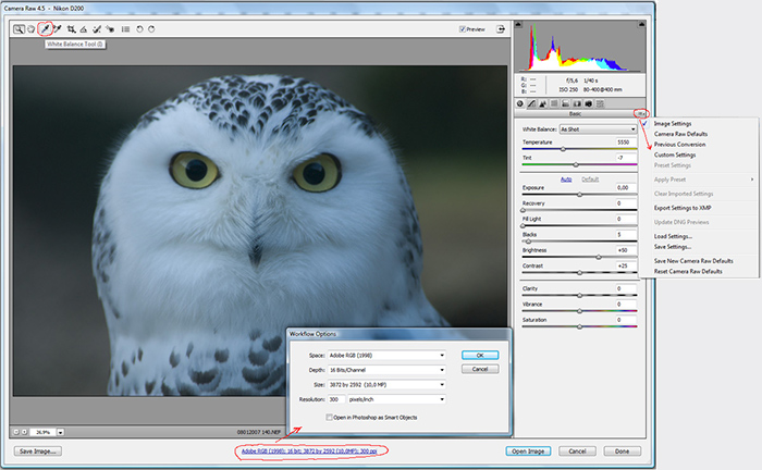 окно Adobe Camera Raw